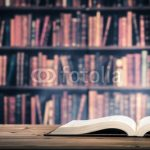 豊富な知識こそが思考力の源
